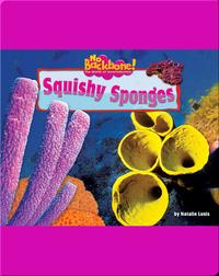 Squishy Sponges