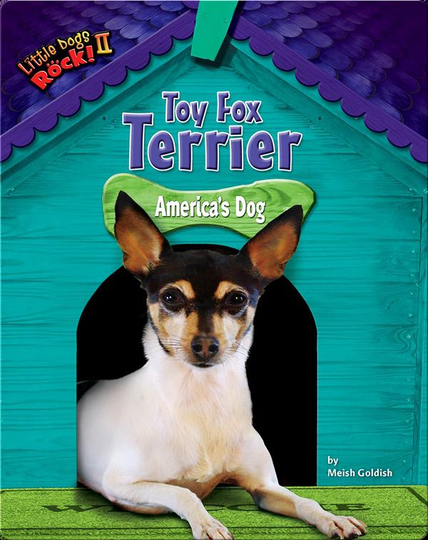 Toy Fox Terrier: America's Dog
