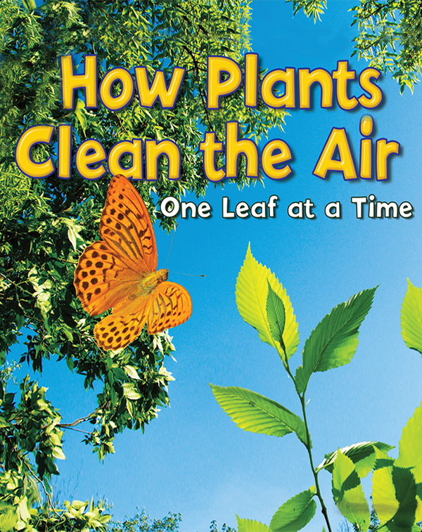 How Plants Clean the Air: One Leaf at a Time