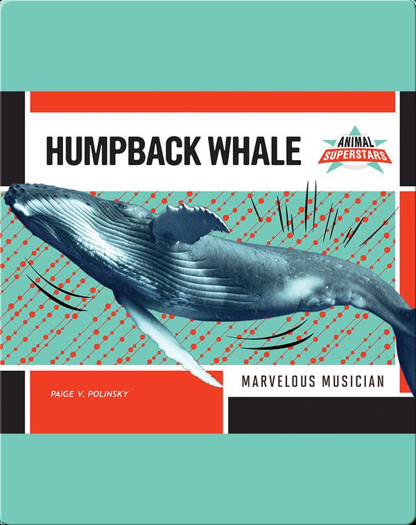Humpback Whale: Marvelous Musician