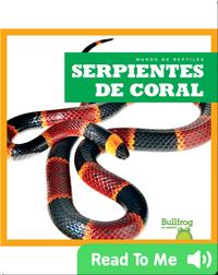Serpientes de coral (Coral Snakes)