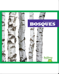 Bosques (Forests)