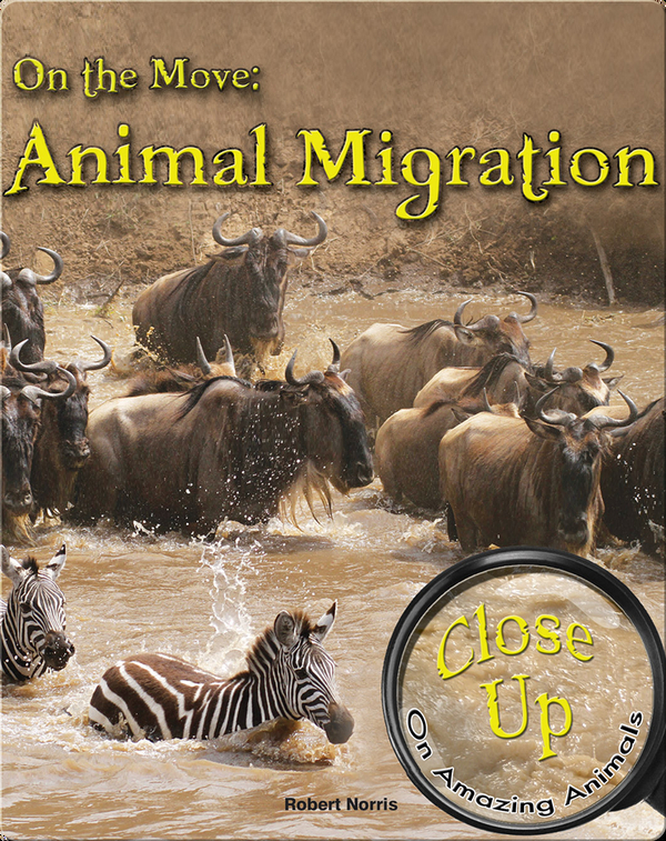 On the Move: Animal Migration