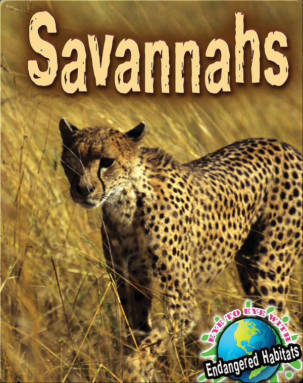 Savannahs