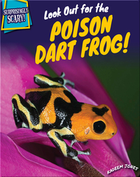 Look Out for the Poison Dart Frog!