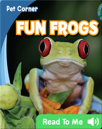 Fun Frogs