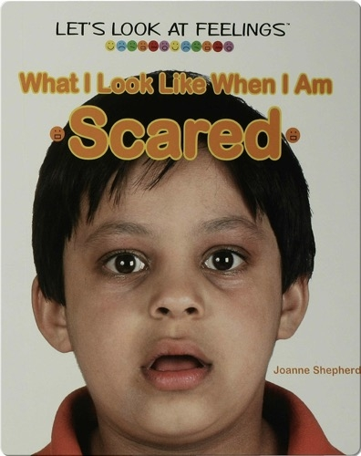What I Look Like When I Am Scared