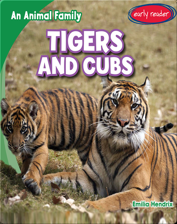 Tigers and Cubs
