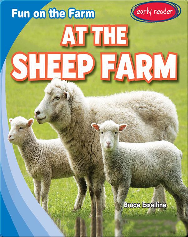 At the Sheep Farm