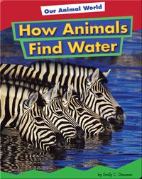 How Animals Find Water
