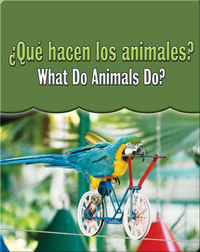 Que Hacen Los Animales?  (What Do Animals Do?)