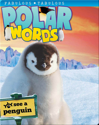 Polar Words