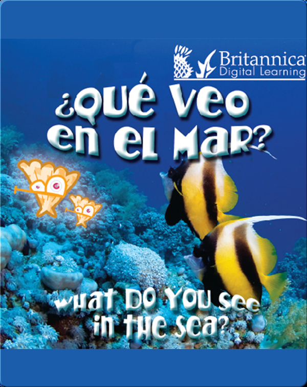 ¿Qué veo en el mar? (What Do You See, in the Sea?)