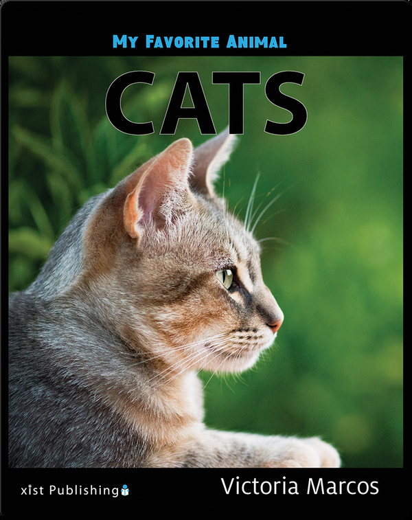 My Favorite Animal: Cats