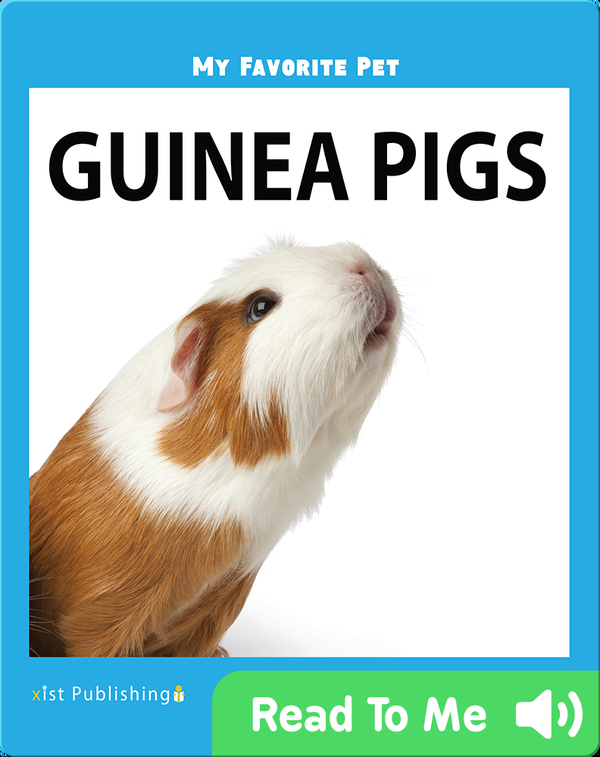 My Favorite Pet: Guinea Pigs
