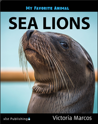 My Favorite Animal: Sea Lions