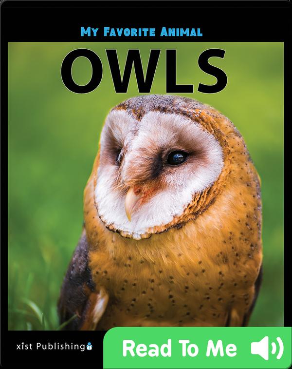 My Favorite Animal: Owls