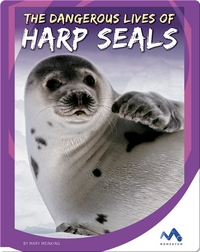 The Dangerous Lives of Harp Seals
