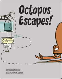 Octopus Escapes!