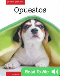 Opuestos (opposites)