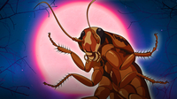 Why Cockroaches Are So Hard To Kill