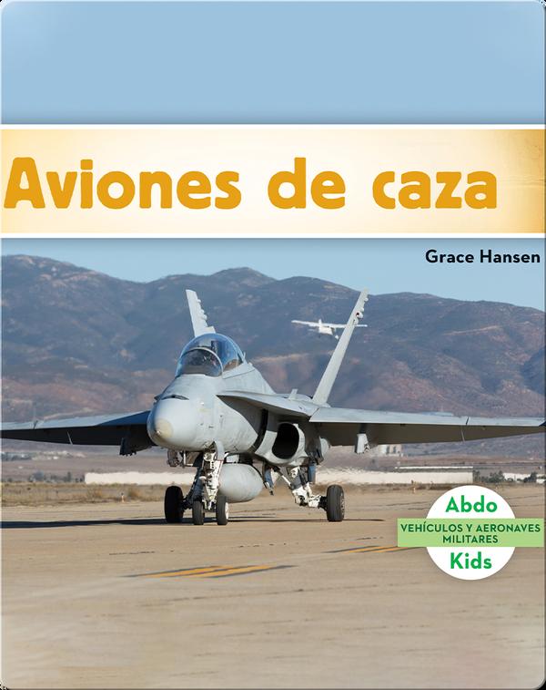 Aviones de caza