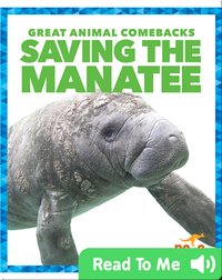 Saving the Manatee