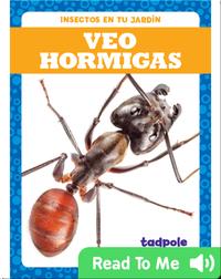 Veo hormigas (I See Ants)