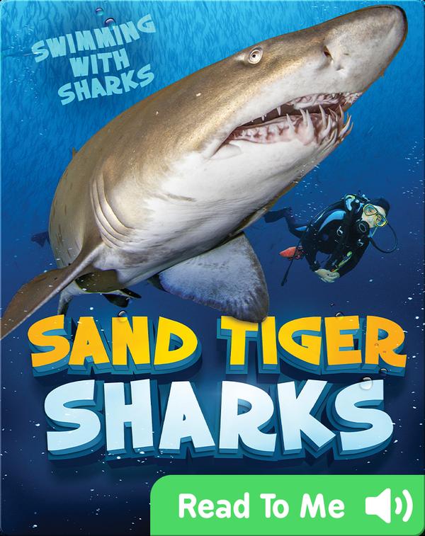 Sand Tiger Sharks