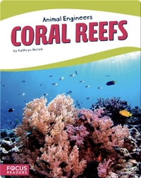 Animal Engineers: Coral Reefs