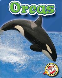 Orcas: Oceans Alive