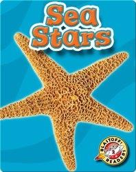 Sea Stars: Oceans Alive