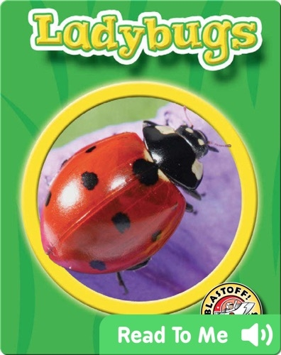 Ladybugs: World of Insects