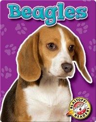 Beagles: Dog Breeds