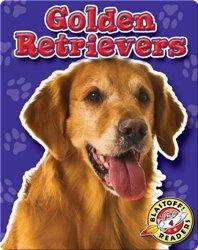 Golden Retrievers: Dog Breeds