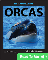 My Favorite Animal: Orcas