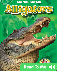 Alligators: Animal Safari