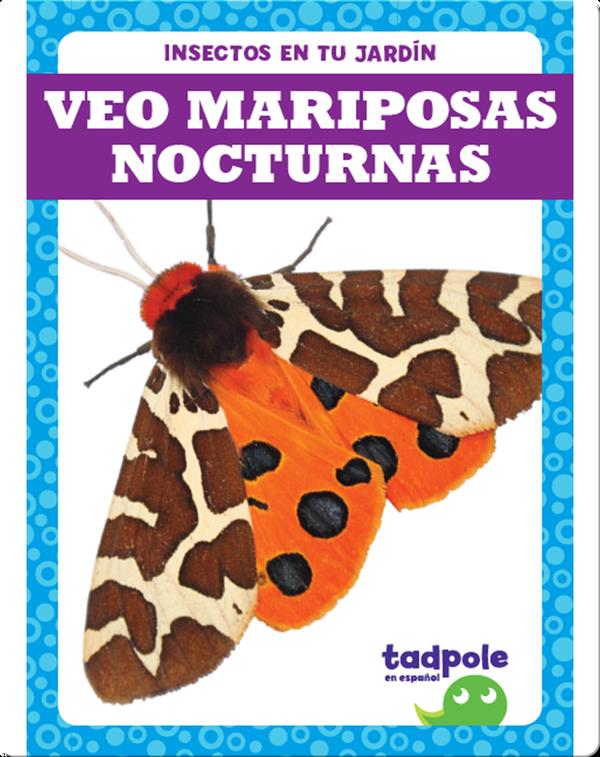 Insectos en tu jardín: Veo mariposas nocturnas