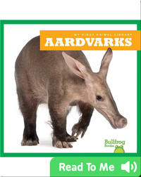 My First Animal Library: Aardvarks