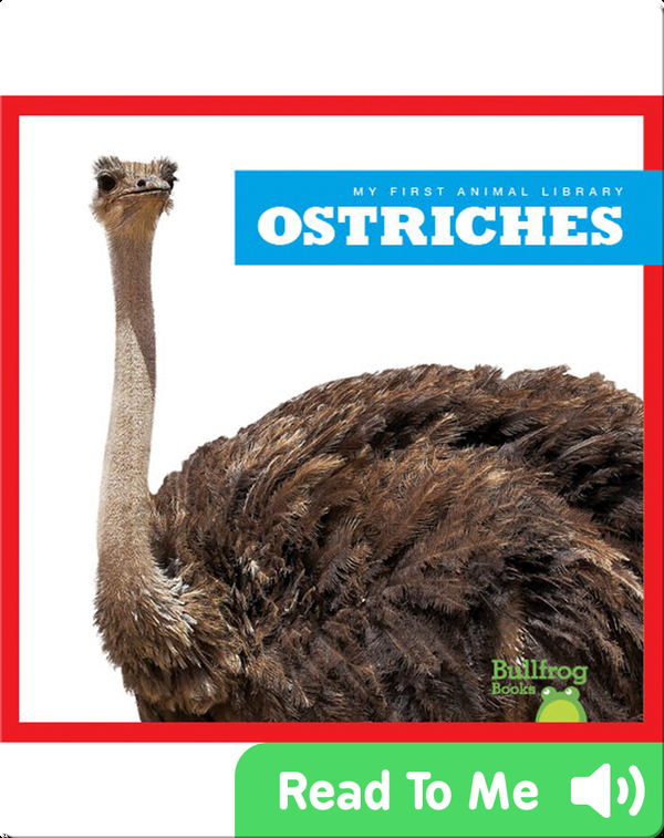 My First Animal Library: Ostriches