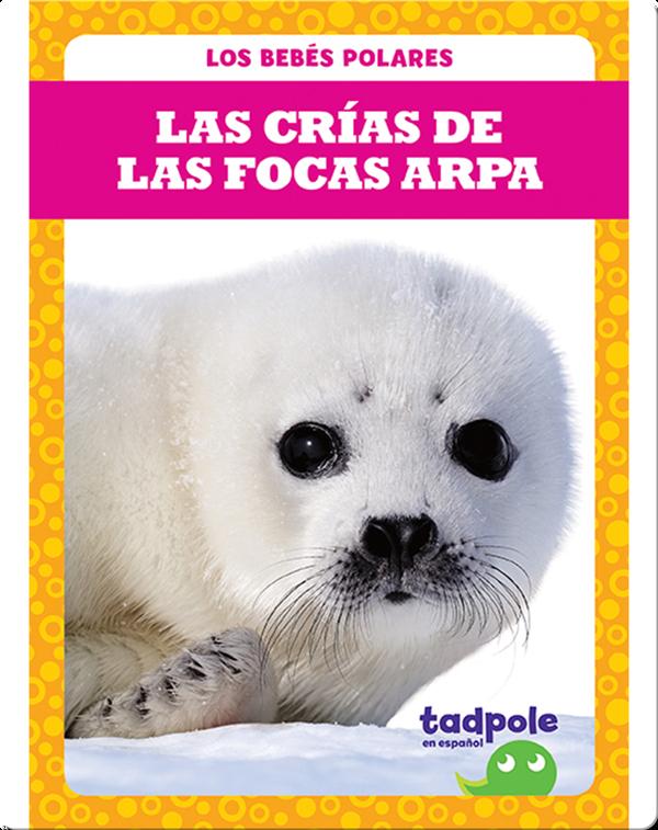 Las crías de las focas arpa