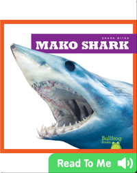 Shark Bites: Mako Shark