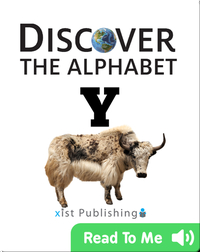 Discover The Alphabet: Y