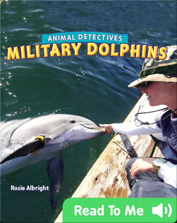 Military Dolphins