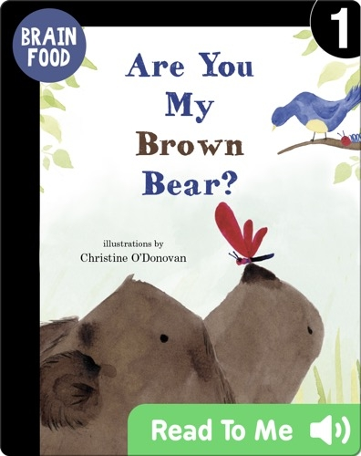 Brain Food: Are You My Brown Bear?