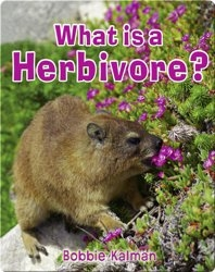 What is a Herbivore?