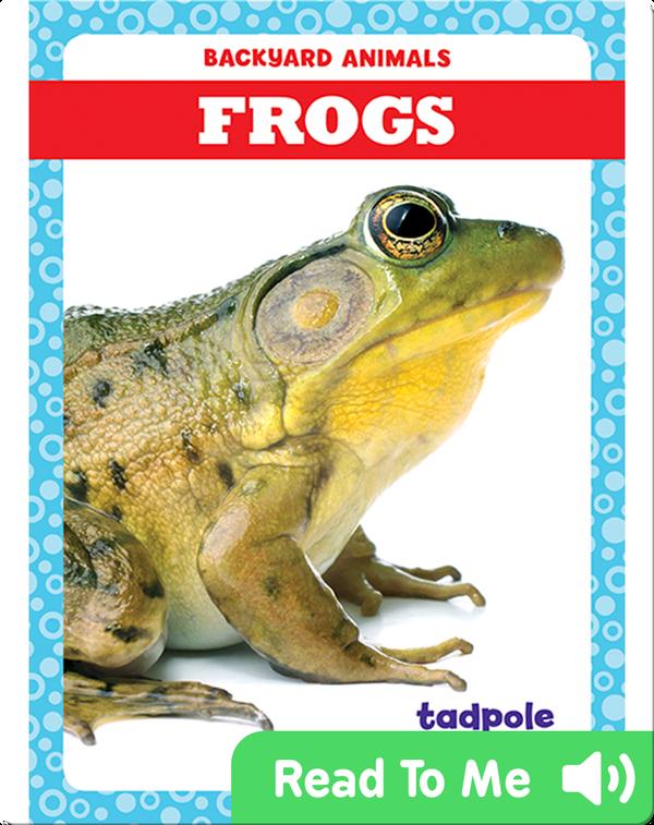 Backyard Animals: Frogs