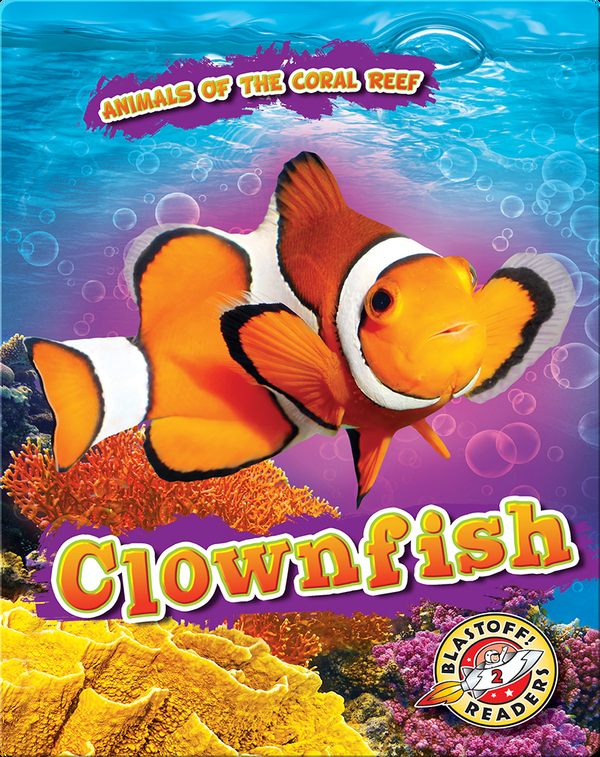 Animals of the Coral Reefs: Clownfish