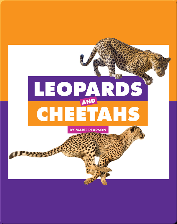 Comparing Animal Differences: Leopards and Cheetahs