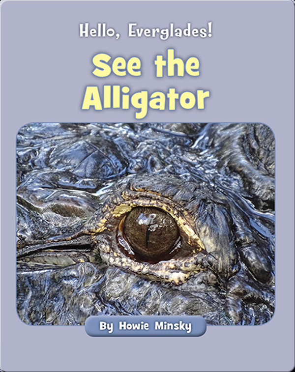 Hello, Everglades!: See the Alligator
